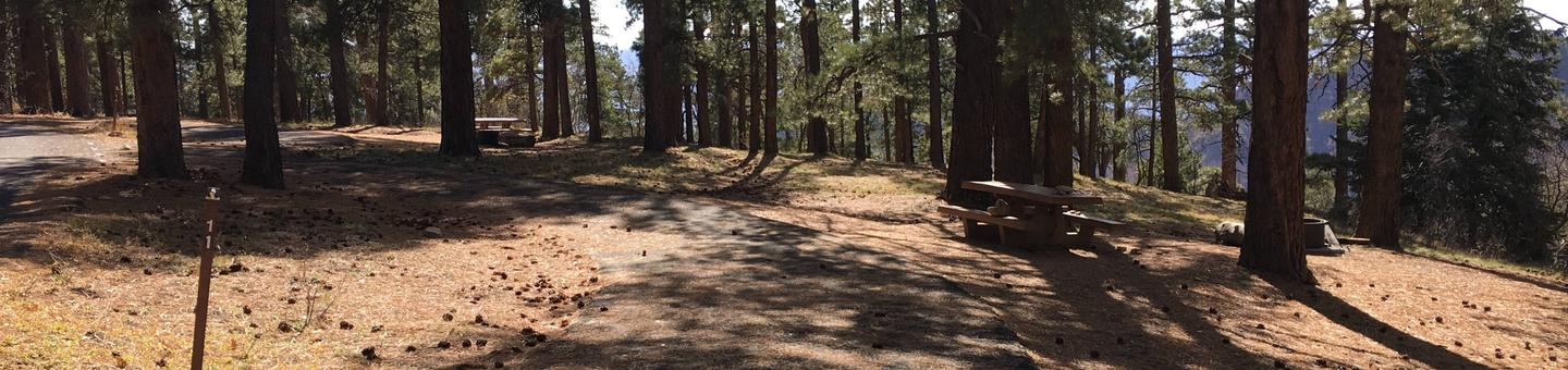 Picnic table, fire pit, and driveway for North Rim Campground, Site 11.