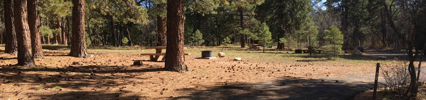 Picnic table, fire pit, and driveway for North Rim Campground, Site 12.