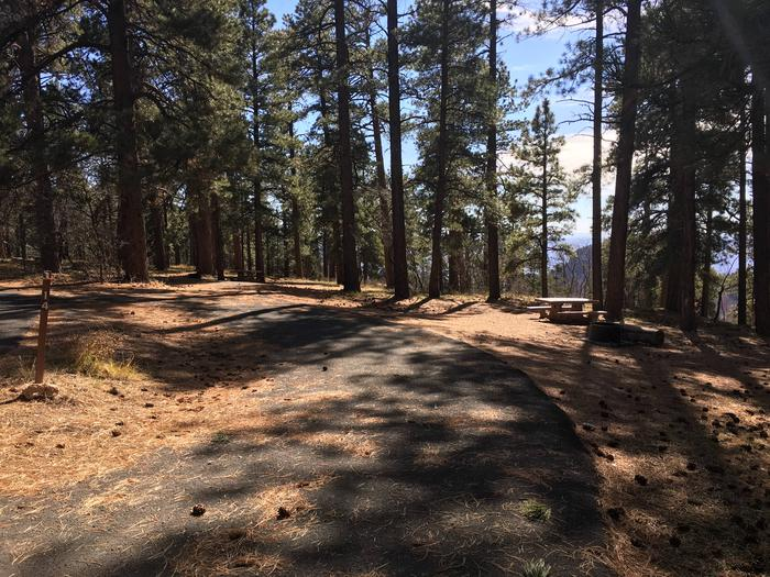 Picnic table, fire pit, and driveway for North Rim Campground, Site 14.