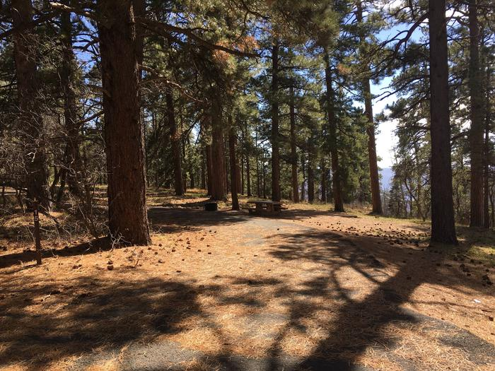 Picnic table, fire pit, and driveway for North Rim Campground, Site 15.