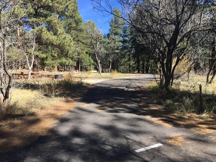 Picnic table, fire pit, and driveway for North Rim Campground, Site 17.