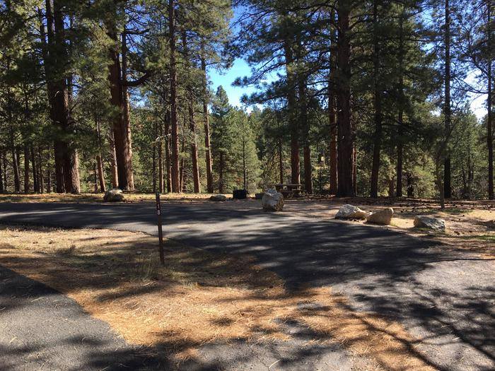 Picnic table, fire pit, and driveway for North Rim Campground, Site 18.