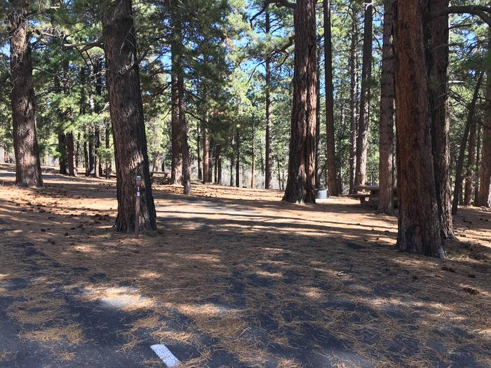 Picnic table, fire pit, and driveway for North Rim Campground, Site 19.