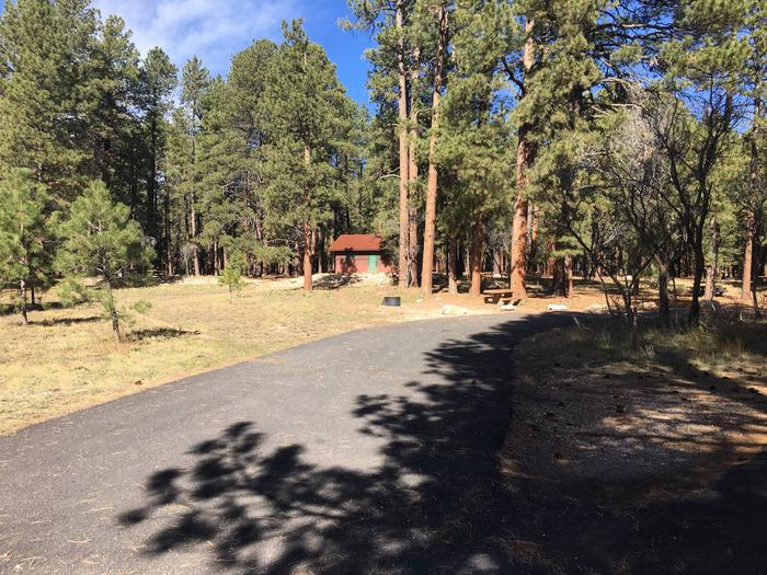 Picnic table, fire pit, and driveway for North Rim Campground, Site 20.