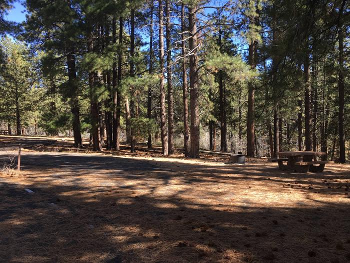 Picnic table, fire pit, and driveway for North Rim Campground, Site 21.