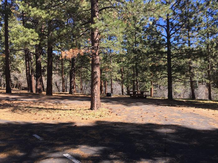 Picnic table, fire pit, and driveway for North Rim Campground, Site 24.