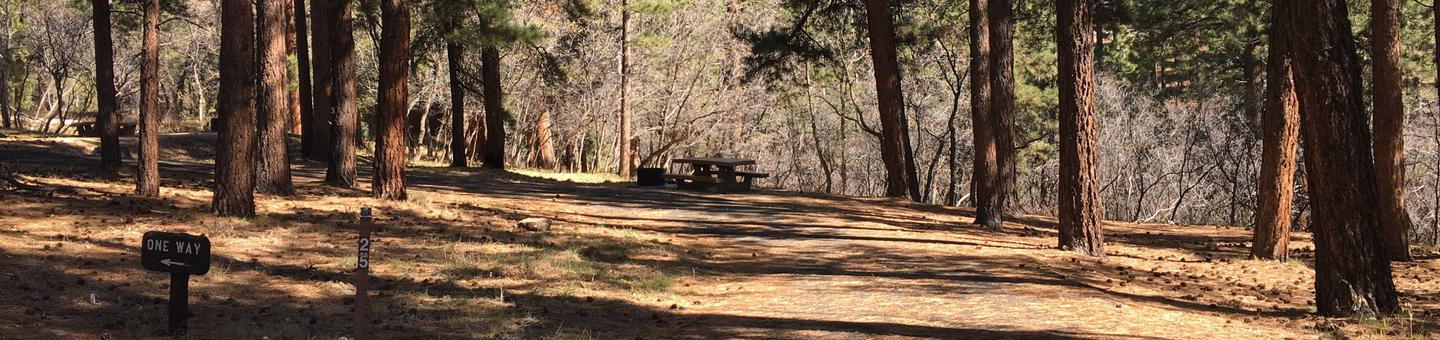Picnic table, fire pit, and driveway for North Rim Campground, Site 25.