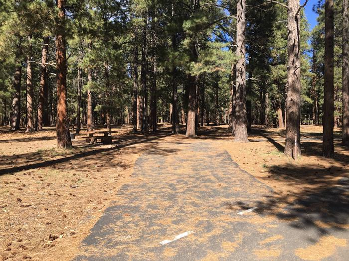 Picnic table, fire pit, and driveway for North Rim Campground, Site 26.