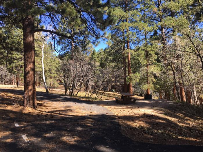 Picnic table, fire pit, and driveway for North Rim Campground, Site 27.
