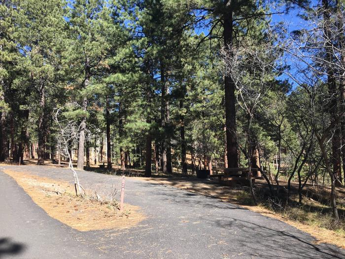 Picnic table, fire pit, and driveway for North Rim Campground, Site 28.