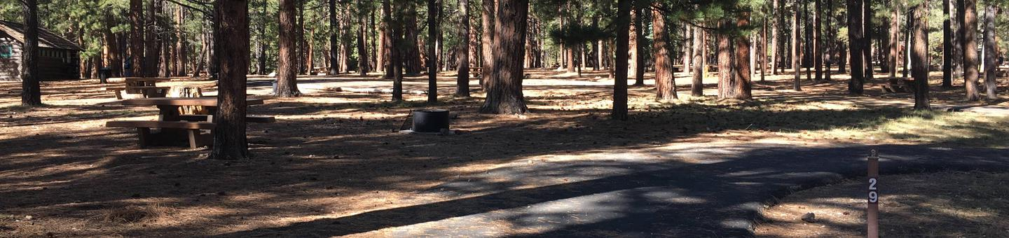 Picnic table, fire pit, and driveway for North Rim Campground, Site 29.