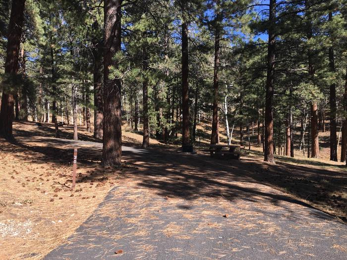 Picnic table, fire pit, and driveway for North Rim Campground, Site 30.