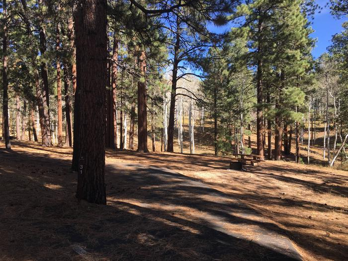 Picnic table, fire pit, and driveway for North Rim Campground, Site 31.