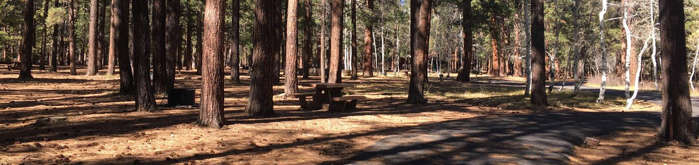 Picnic table, fire pit, and driveway for North Rim Campground, Site 33.