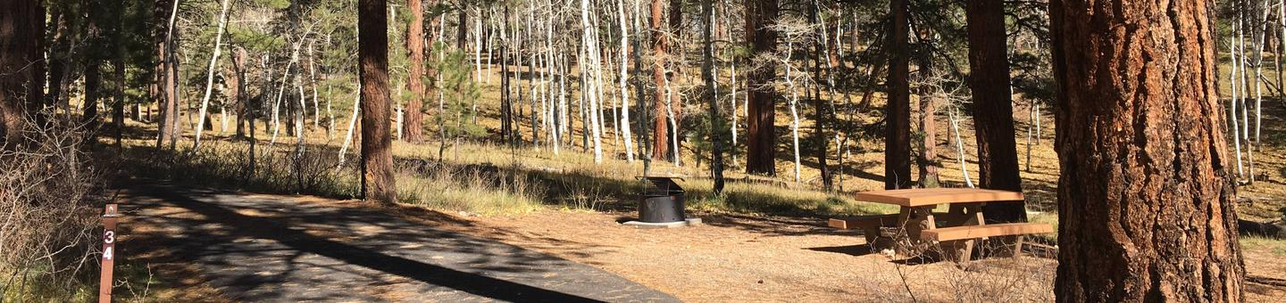Picnic table, fire pit, and driveway for North Rim Campground, Site 34.