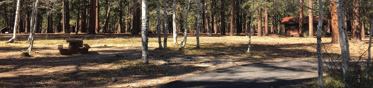 Picnic table, fire pit, and driveway for North Rim Campground, Site 35.