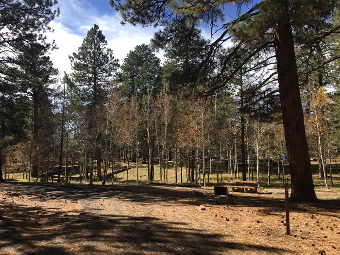 Picnic table, fire pit, and driveway for North Rim Campground, Site 5.