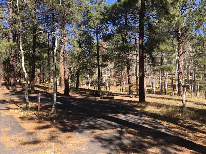 Picnic table, fire pit, and driveway for North Rim Campground, Site 36.