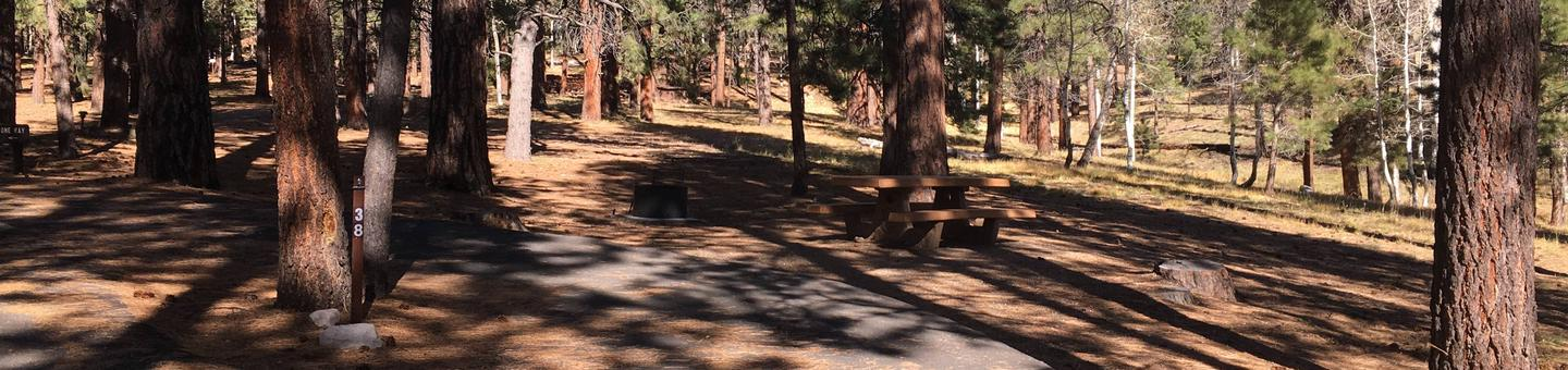 Picnic table, fire pit, and driveway for North Rim Campground, Site 38.