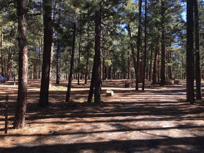Picnic table, fire pit, and driveway for North Rim Campground, Site 45.