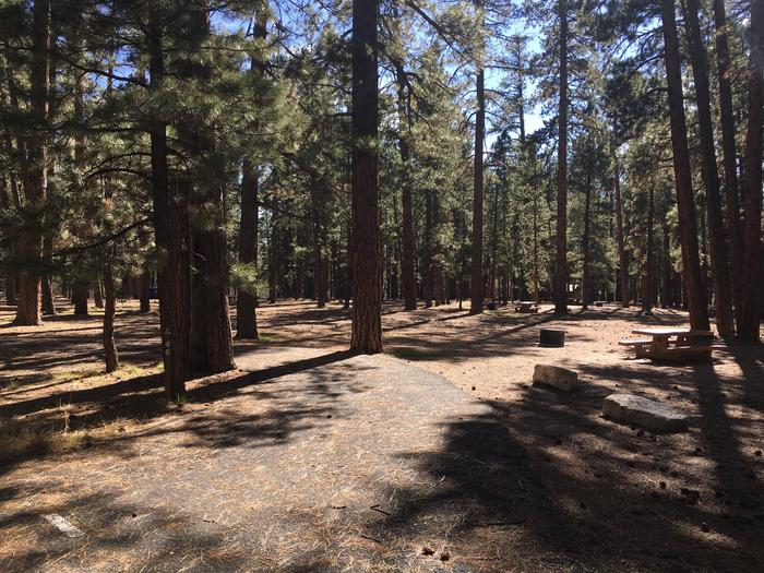 Picnic table, fire pit, and driveway for North Rim Campground, Site 46.