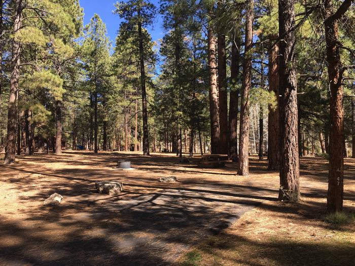 Picnic table, fire pit, and driveway for North Rim Campground, Site 47.