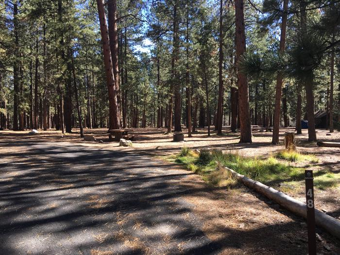 Picnic table, fire pit, and driveway for North Rim Campground, Site 48.