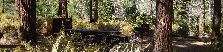 Sherwin Creek CG SITE 52
