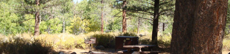 Sherwin Creek CG SITE 66