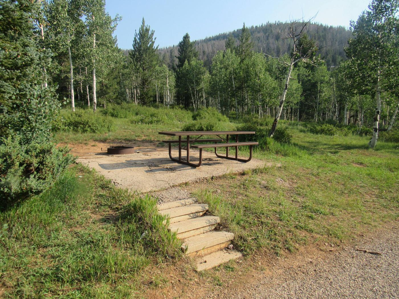 TE-AHThe campground sits in a large Aspen tree stand.