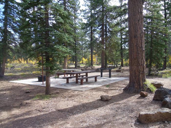 Campsite #48