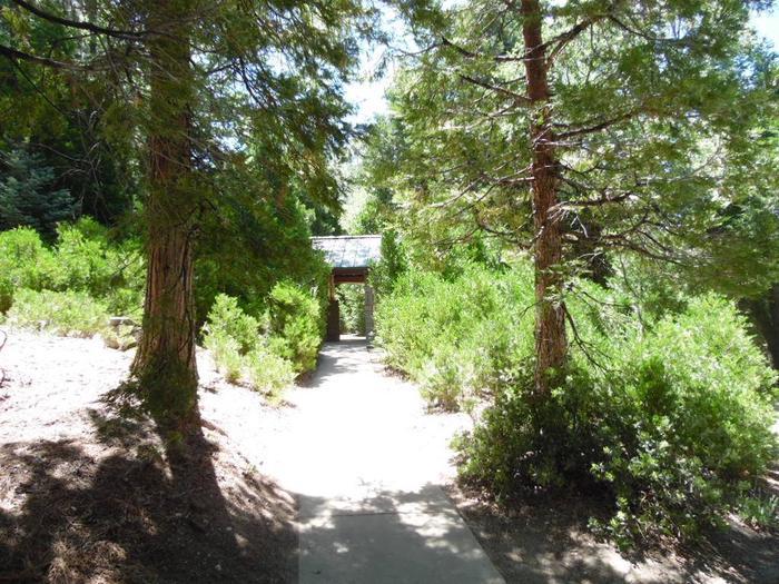 Short trail to bathroom at Dogwood