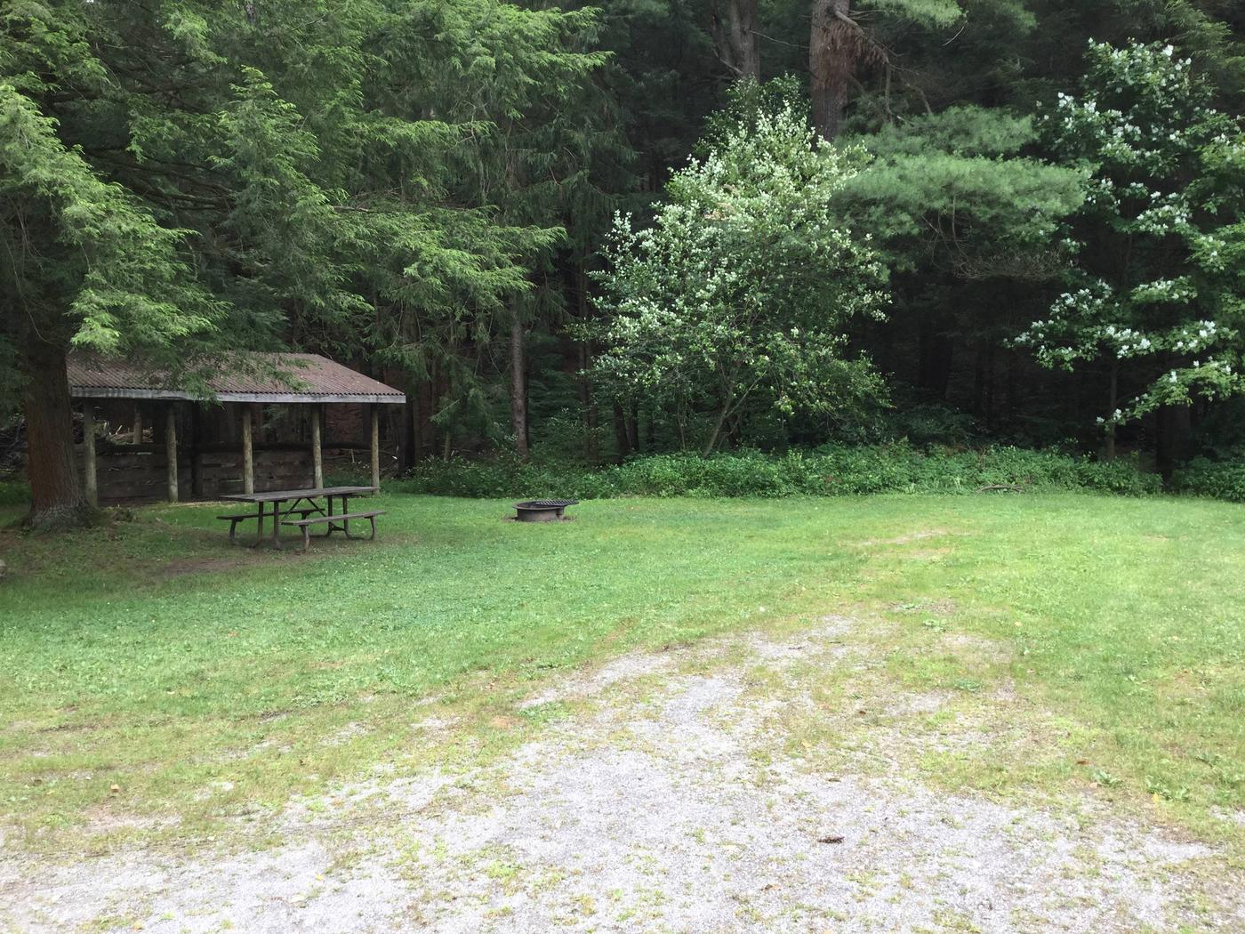 Kelly Pines Campground: Site 3
