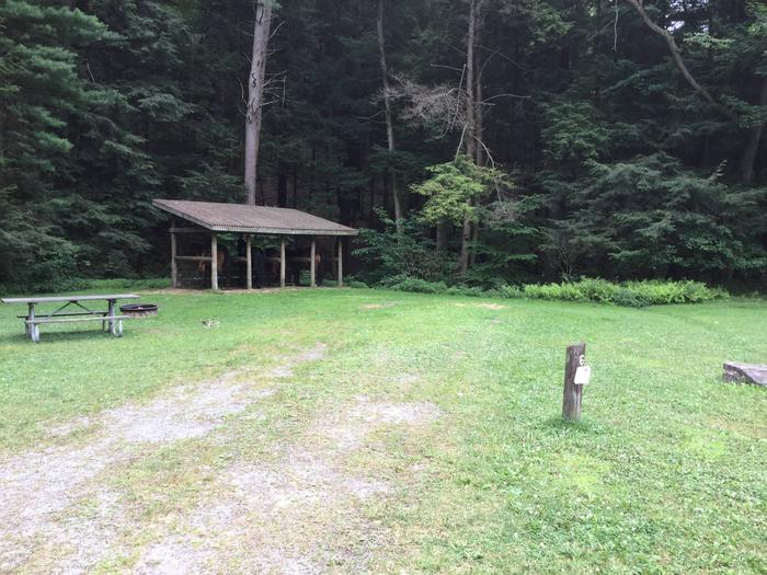 Kelly Pines Campground: Site 6