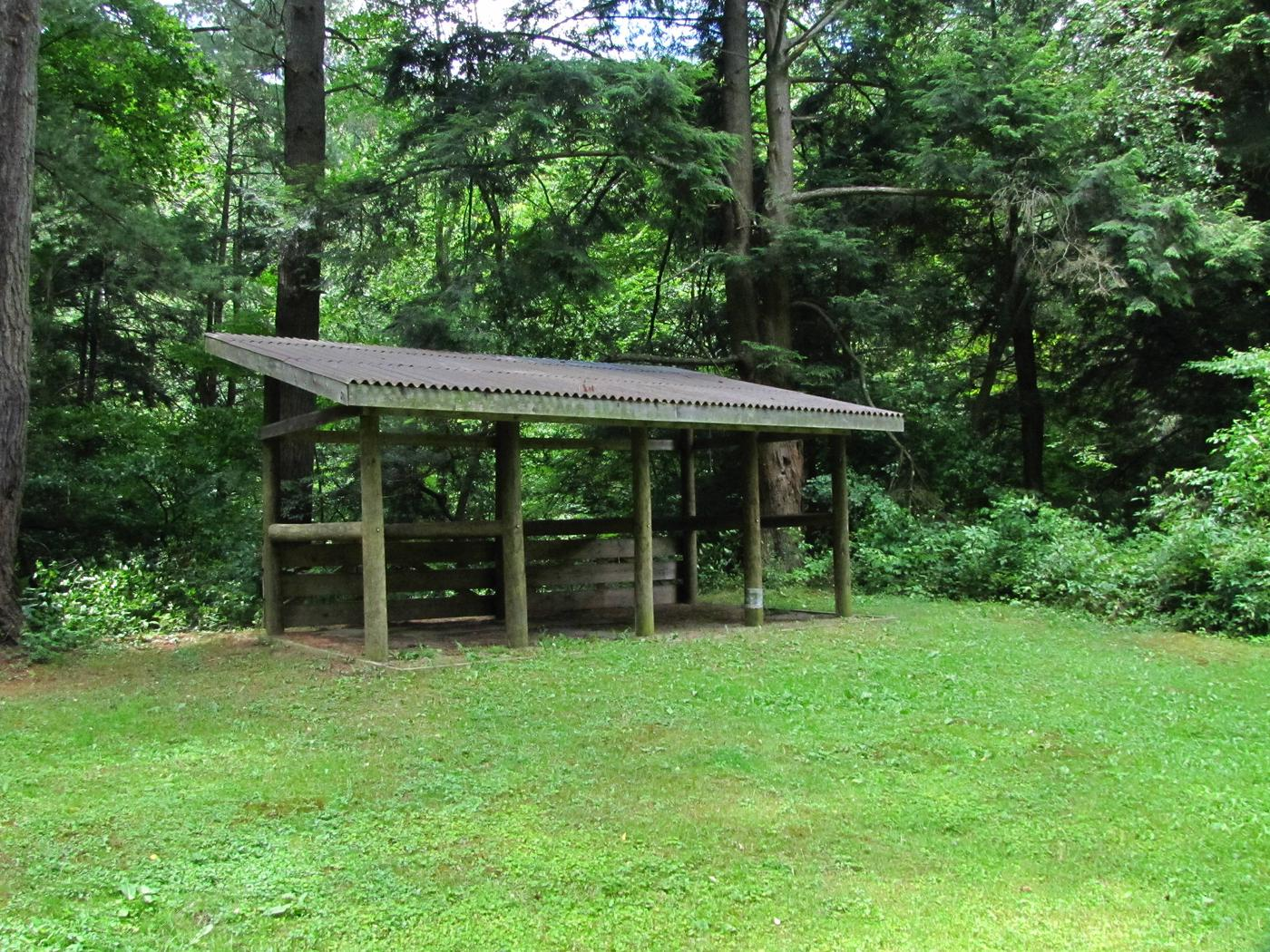 Kelly Pines Campground: Site 4