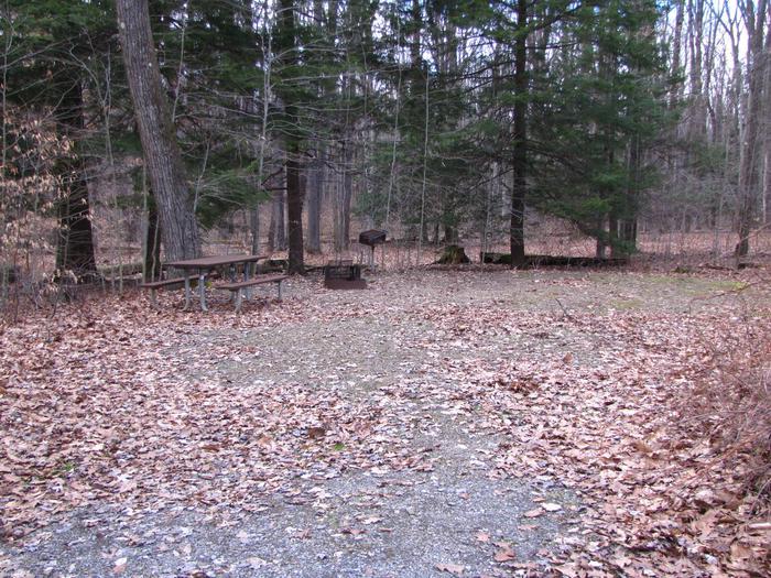 Hearts Content Recreation Area: Site 3