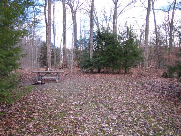Hearts Content Recreation Area: Site 4