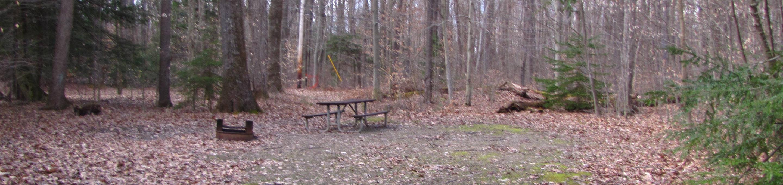 Hearts Content Recreation Area: Site 5