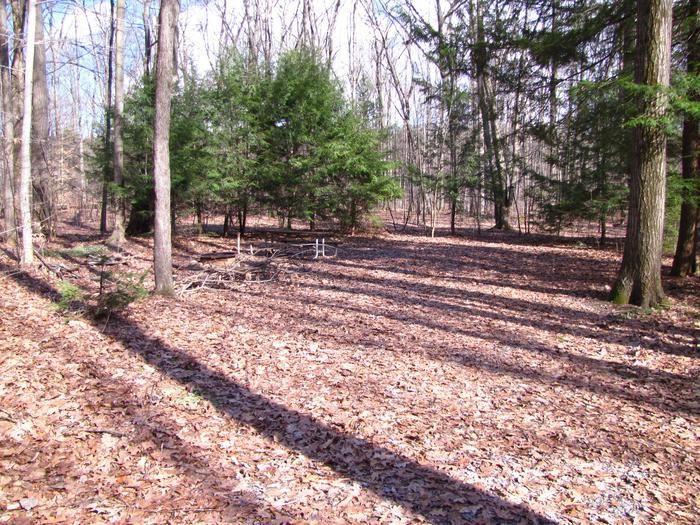 Hearts Content Recreation Area: Site 10