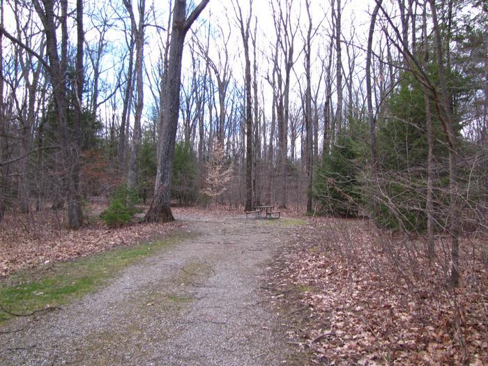 Hearts Content Recreation Area: Site 14