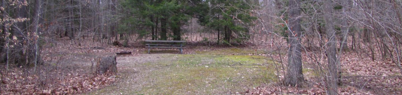 Hearts Content Recreation Area: Site 15