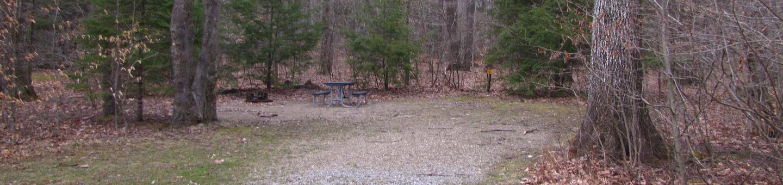 Hearts Content Recreation Area: Site 16