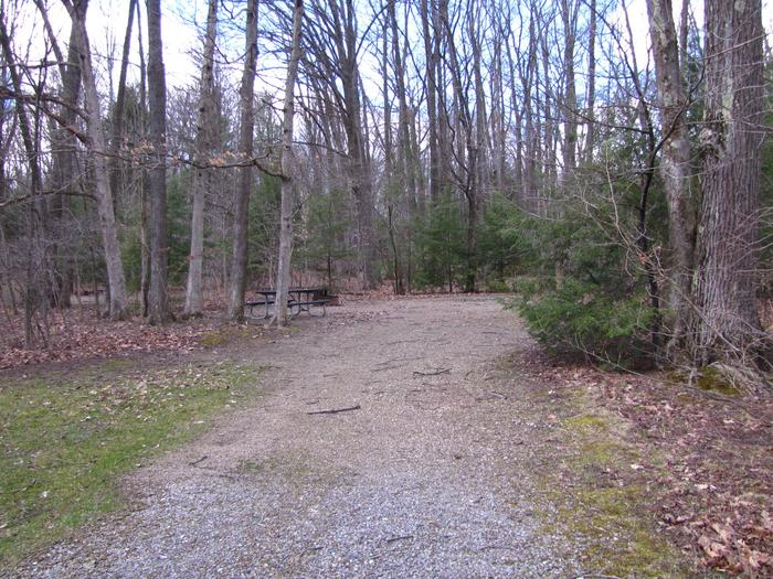 Hearts Content Recreation Area: Site 17