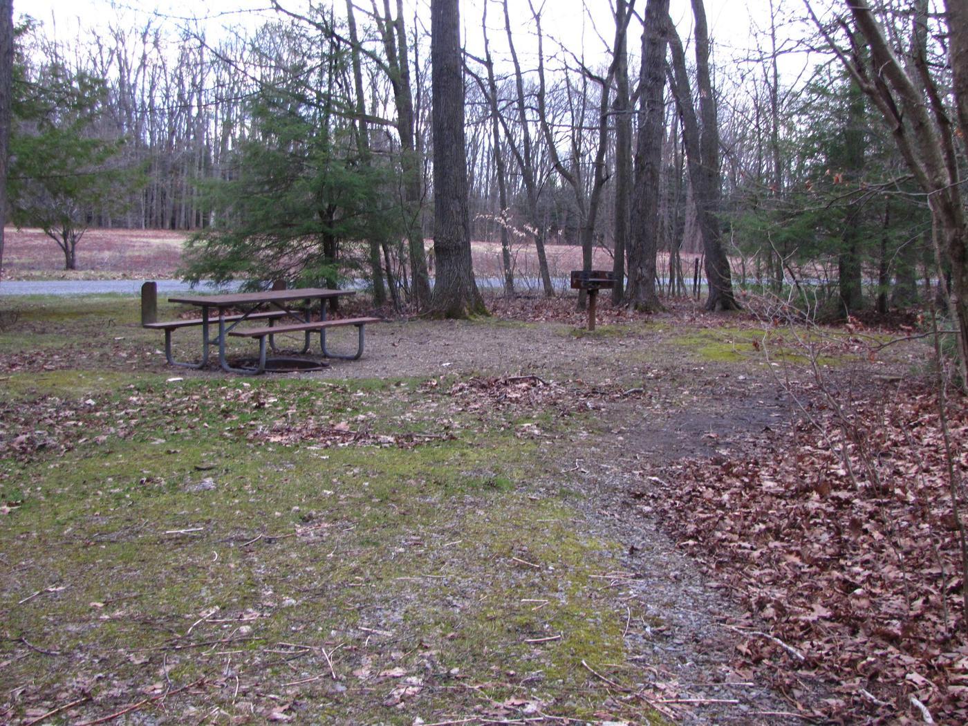 Hearts Content Recreation Area: Site 18