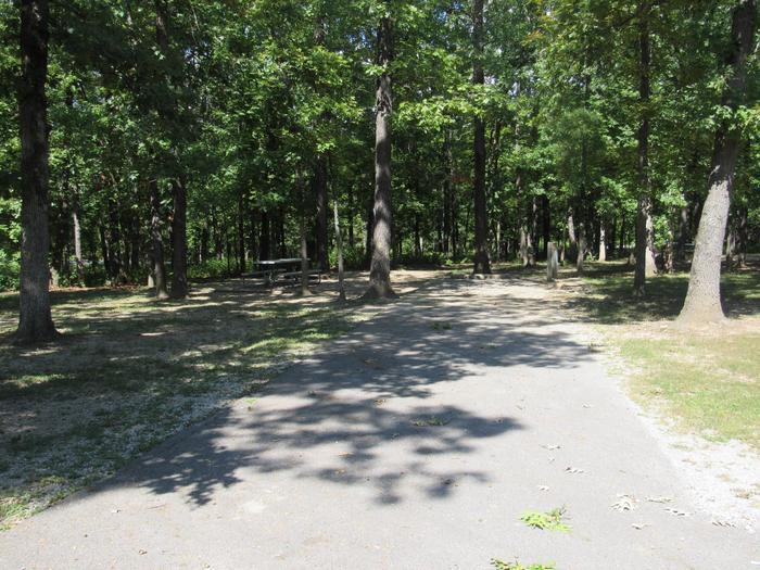 Indian Creek Site # 4