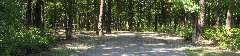 Indian Creek Site # 6