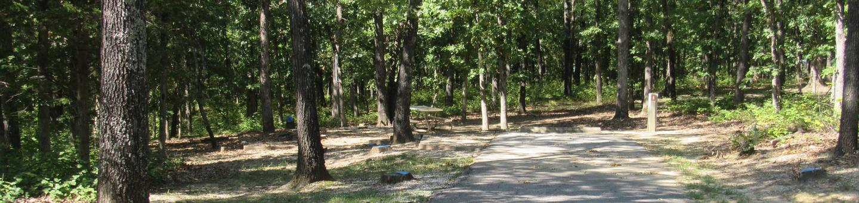 Indian Creek Site # 8
