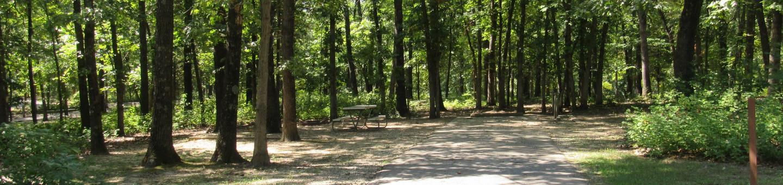 Indian Creek Site # 43