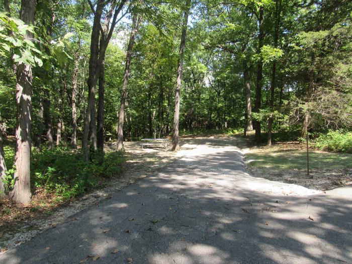 Indian Creek Site # 51
