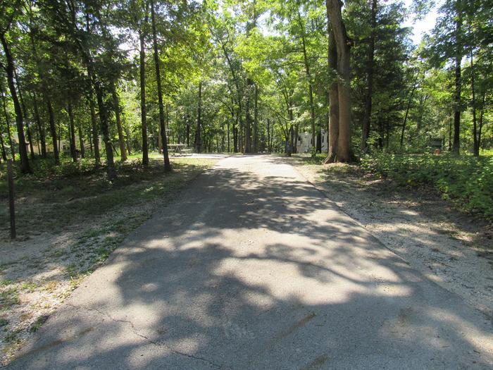 Indian Creek Site # 54